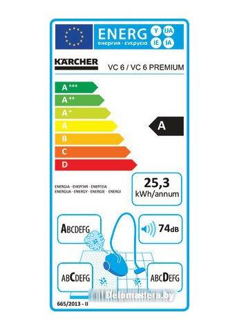 Пылесос Karcher DS 6 Premium Mediclean Home Line (1.195-241.0)