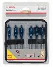 Набор из 6 перьевых сверл Self Cut Speed Bosch Professional 2608595424